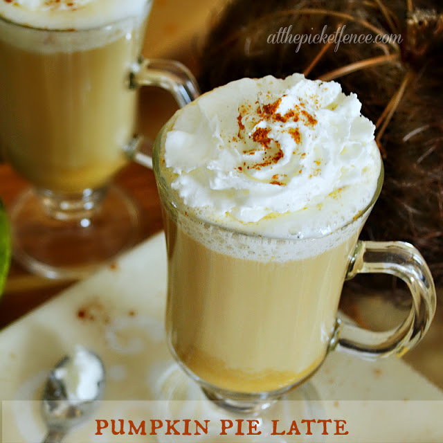 Pumpkin Pie Latte…a perfect fall treat!