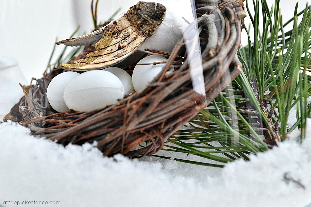Winter Birds Nest in snow