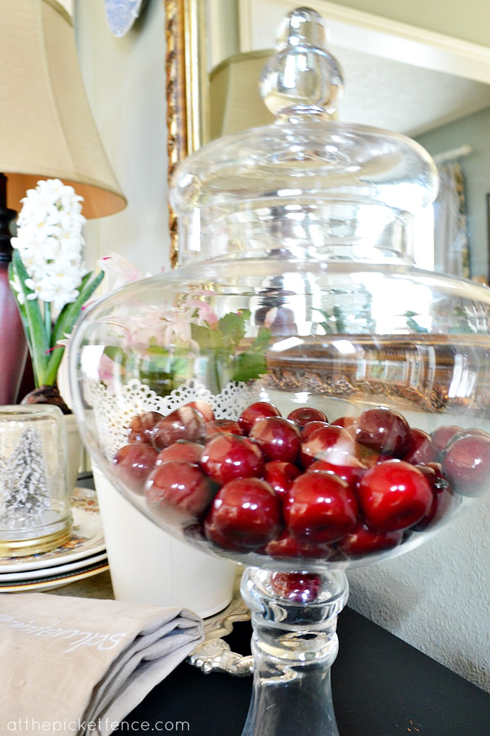 cranberries in apothecary
