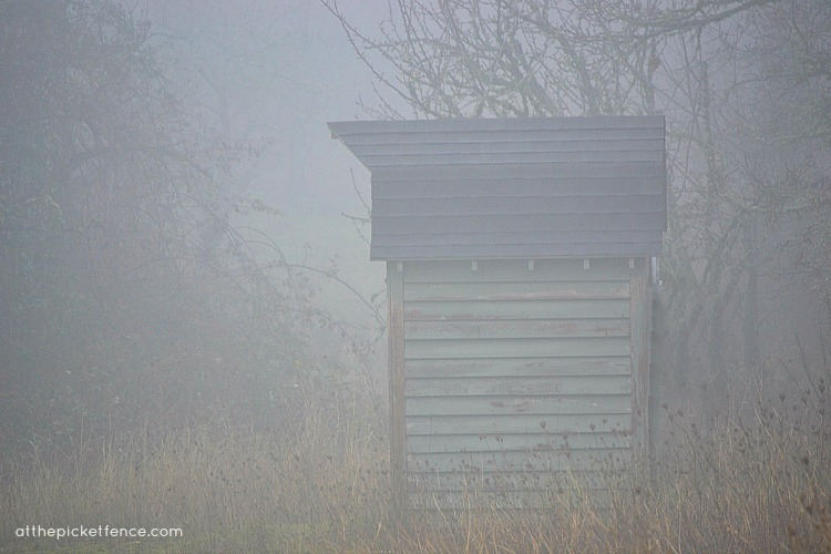shed in the fog