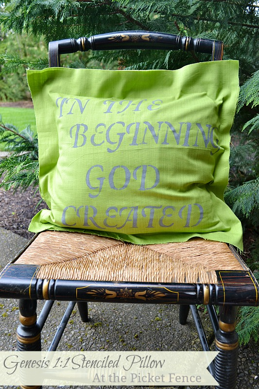Genesis 1 pillow www.atthepicketfence.com