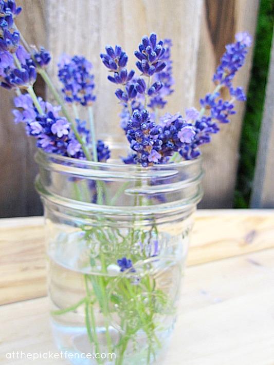 lavender in mason jars atthepicketfence.com