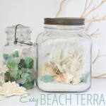 Great ideas for how to make a beach terrarium