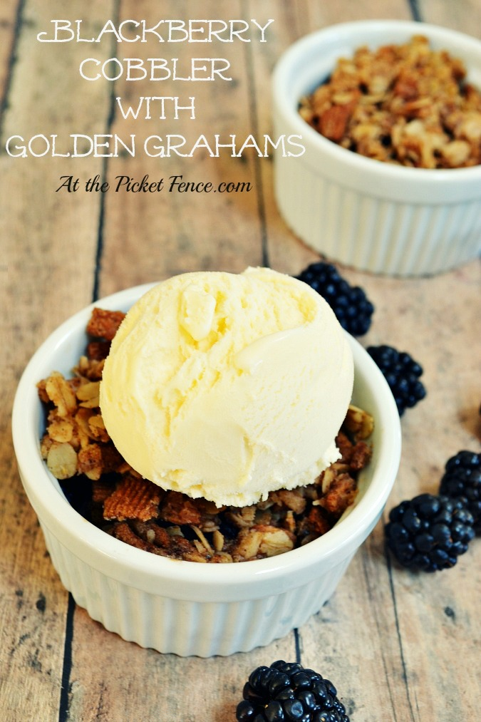 Blackberry Cobbler with Golden Grahams crust atthepicketfence.com
