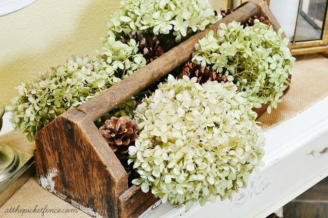 hydrangeas in wooden tool box