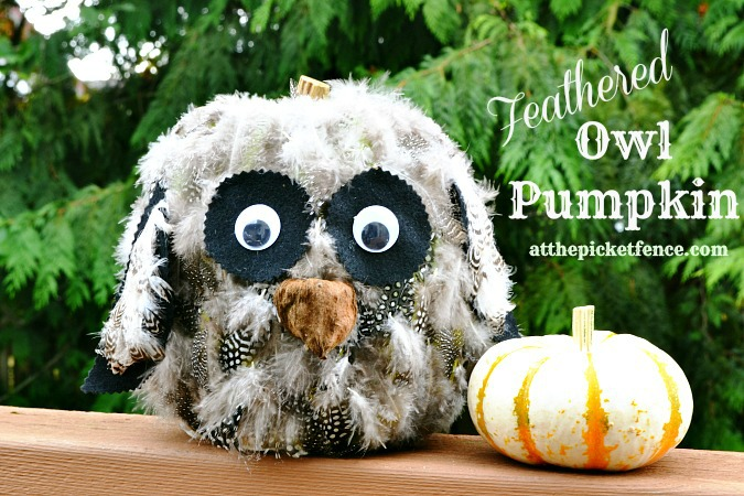 feathered owl pumpkin craft from atthepicketfence.com