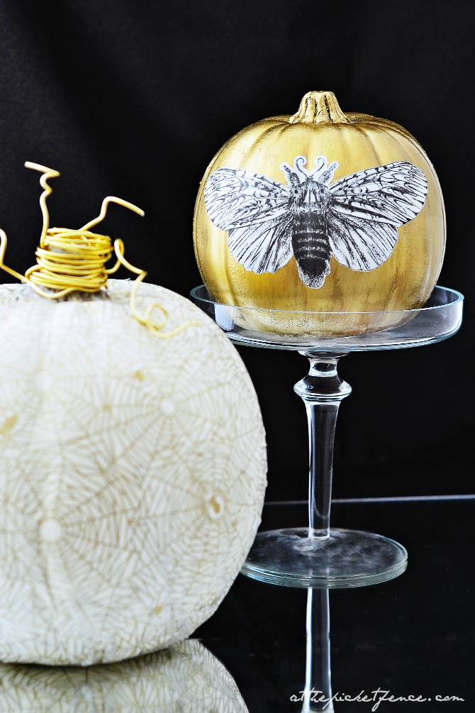 white and gold decoupage pumpkins 1