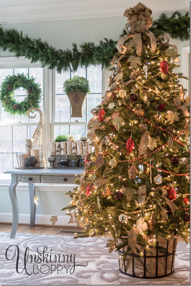 Balsam-Fir-Christmas-tree_thumb