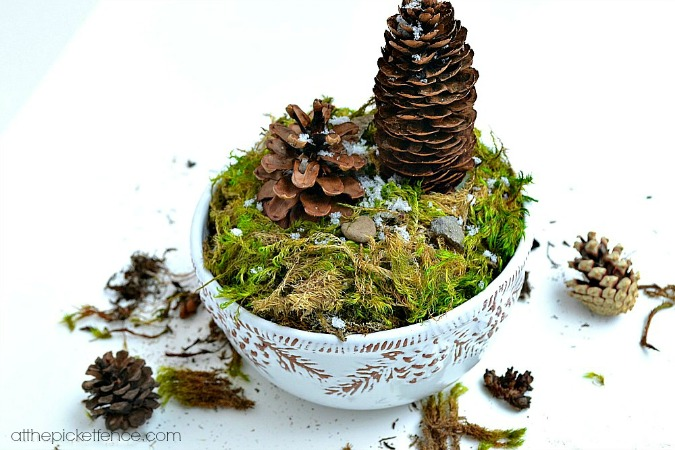 Pine Cone Terrarium craft from atthepicketfence.com