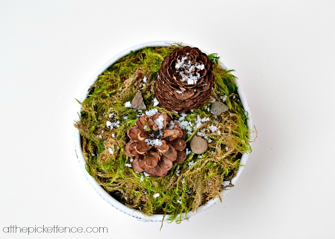 pine cone terrarium winter decor from atthepicketfence.com