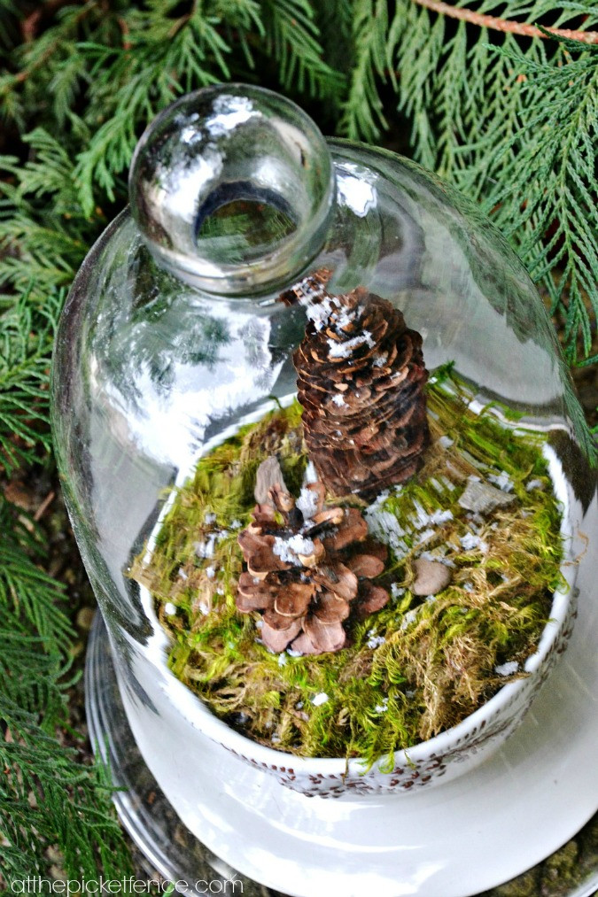 pine cone winter terrarium craft from atthepicketfence.com