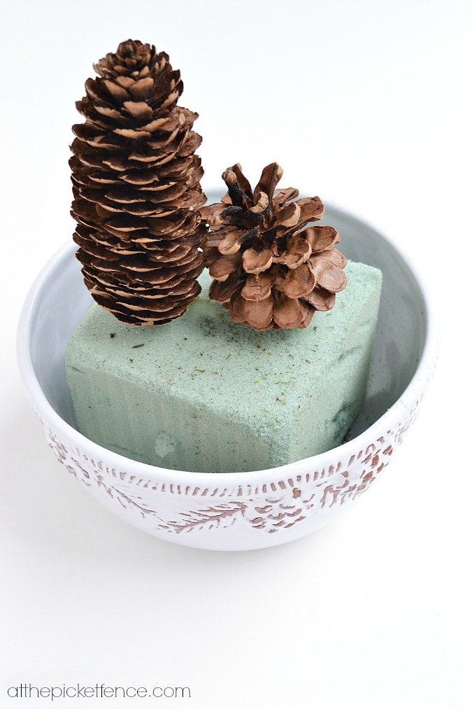 pine cones in foam