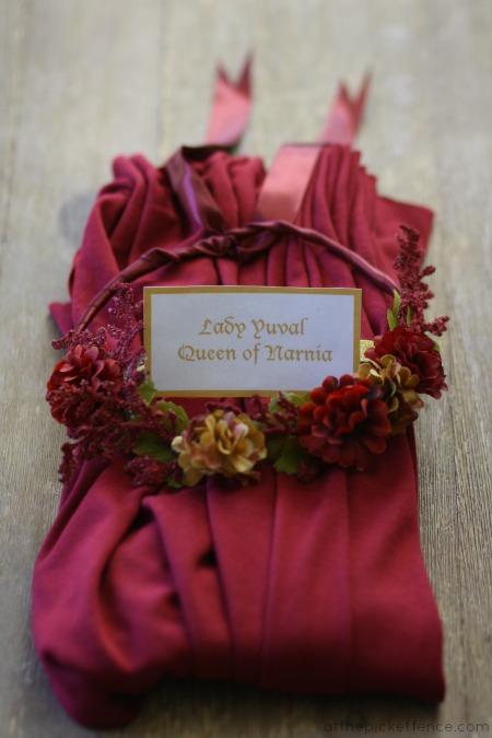 Narnia queen costumes