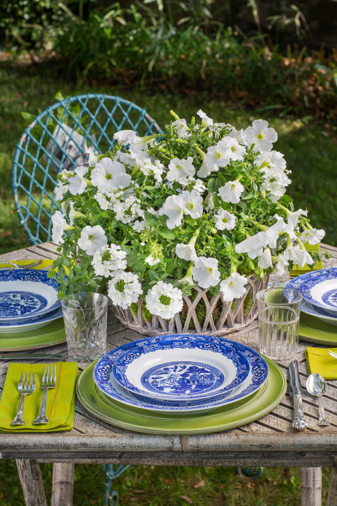 Southern Living Ready to Impress Container Gardens