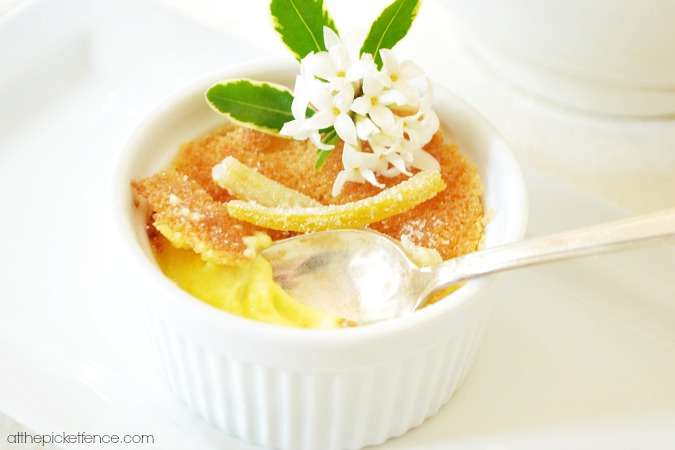 lemon creme brulee with candied lemons atthepicketfence.com