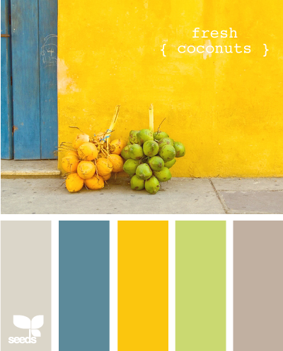 FreshCoconuts620