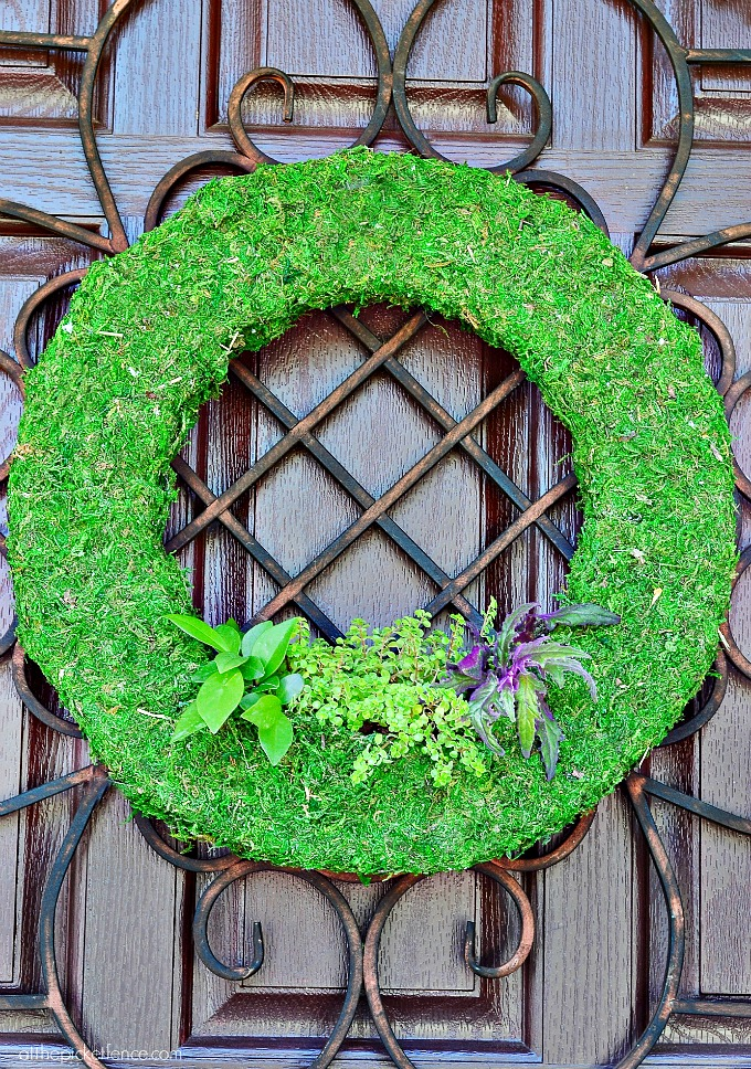 Moss Wreath Planter