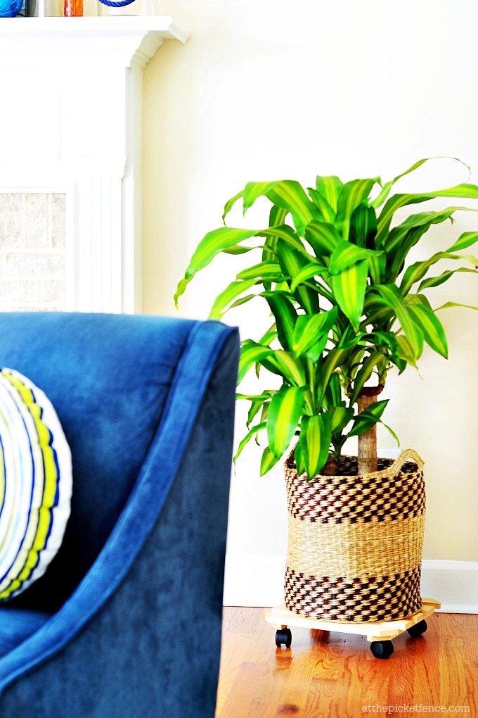 Summer Home Tour Tropical Plant in basket