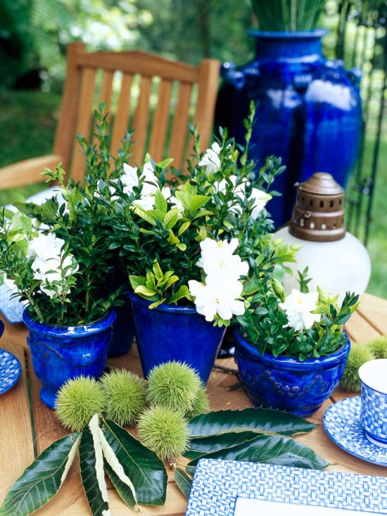 Collection of blue outdoor containers