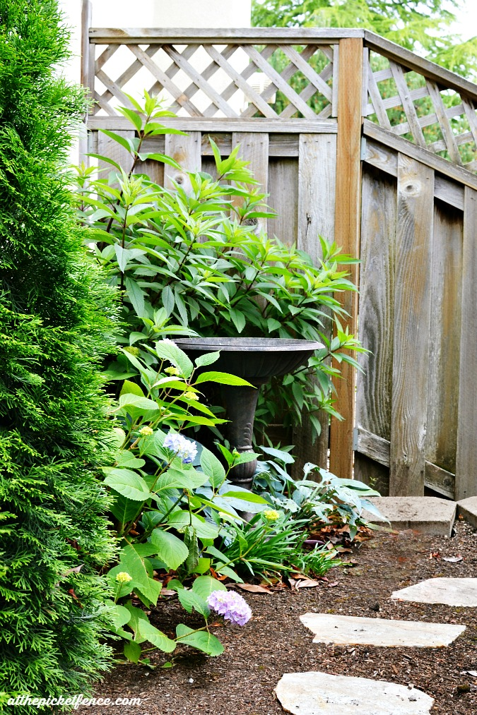 garden path with bird bath atthepicketfence.com