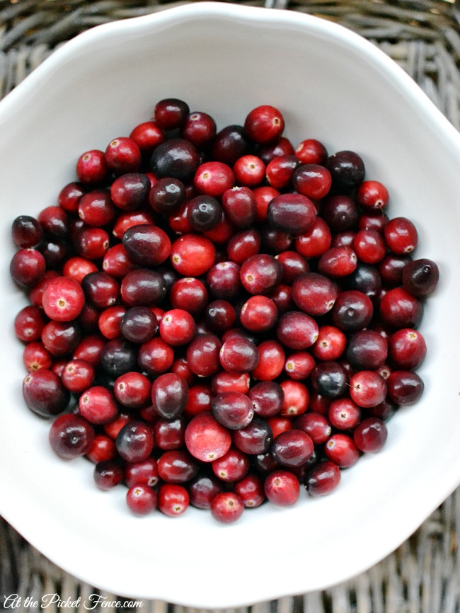 cranberries in white bowl atthepicketfence.com