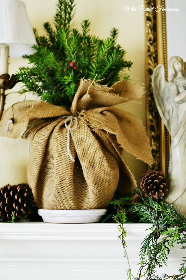 potted tree wrapped in burlap for christmas mantel atthepicketfence.com