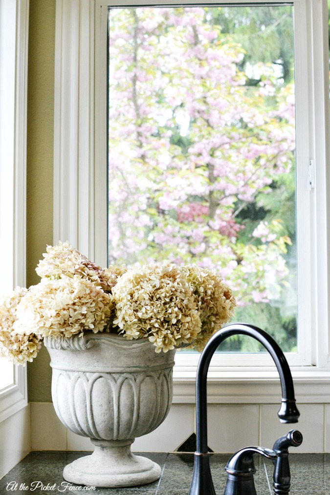 dried hydrangeas in urn in kitchen window atthepicketfence.com