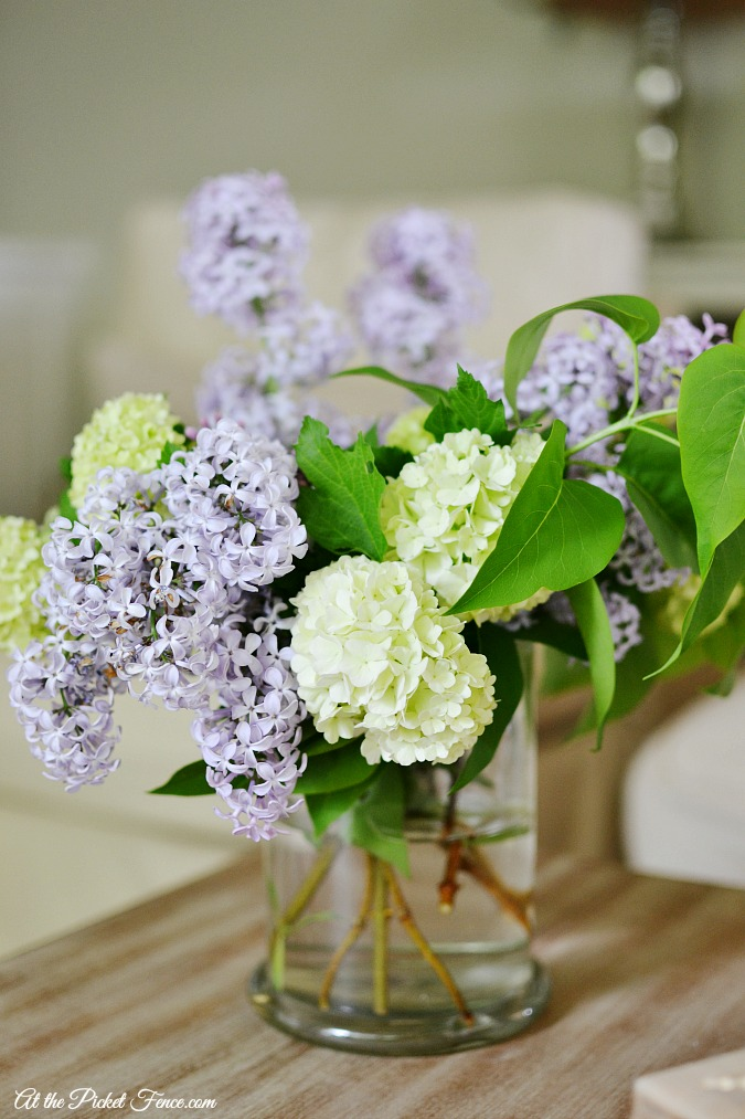 lilac and snowball blooms atthepicketfence.com