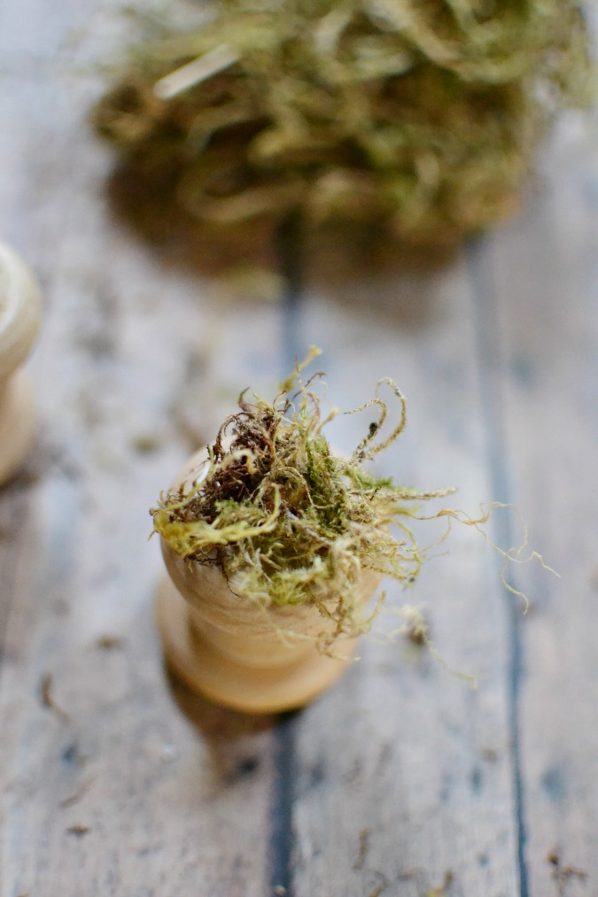moss on wood spindle