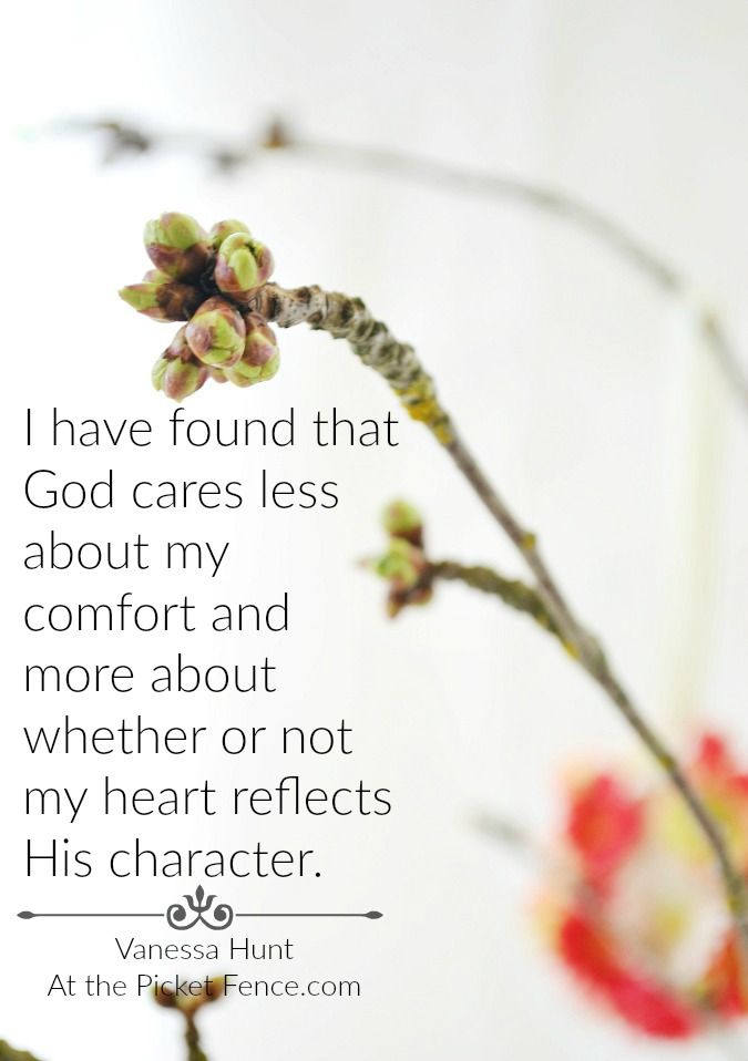 Comfort and character