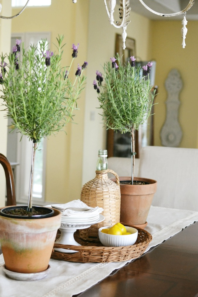 lavender topiaries on dining table
