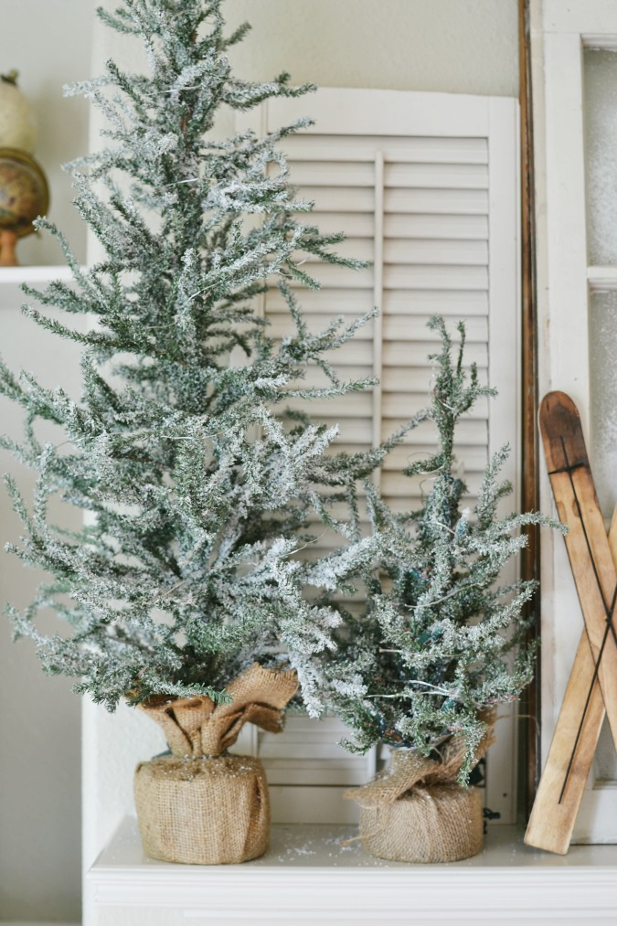 Flocked tabletop pine trees from wayfair.com