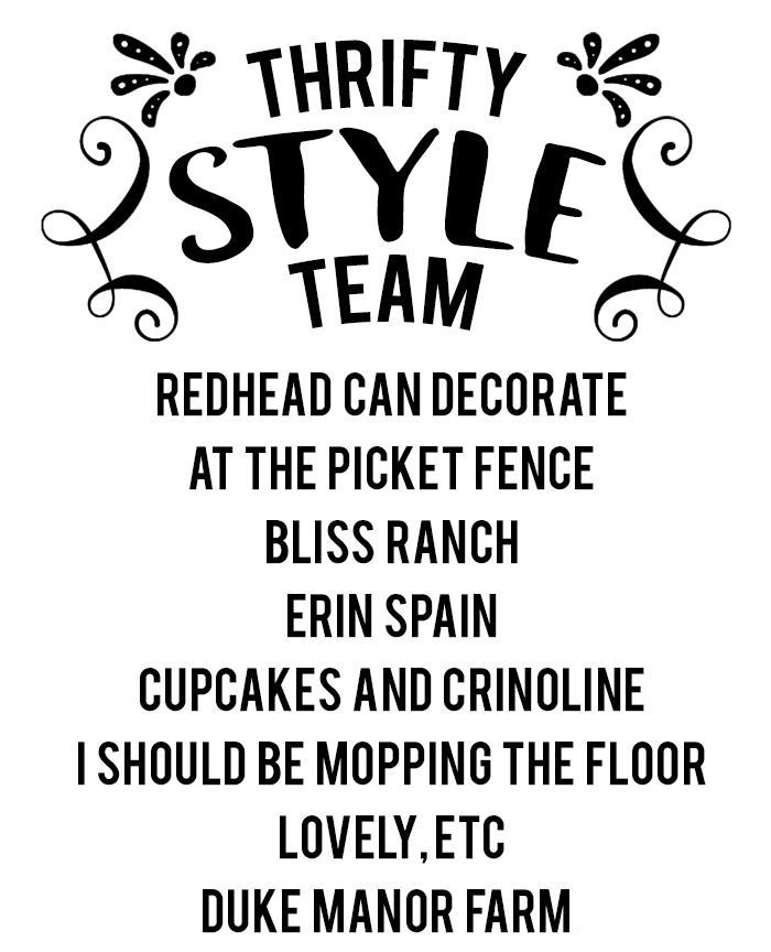 thrifty style team logo_namesREVISED