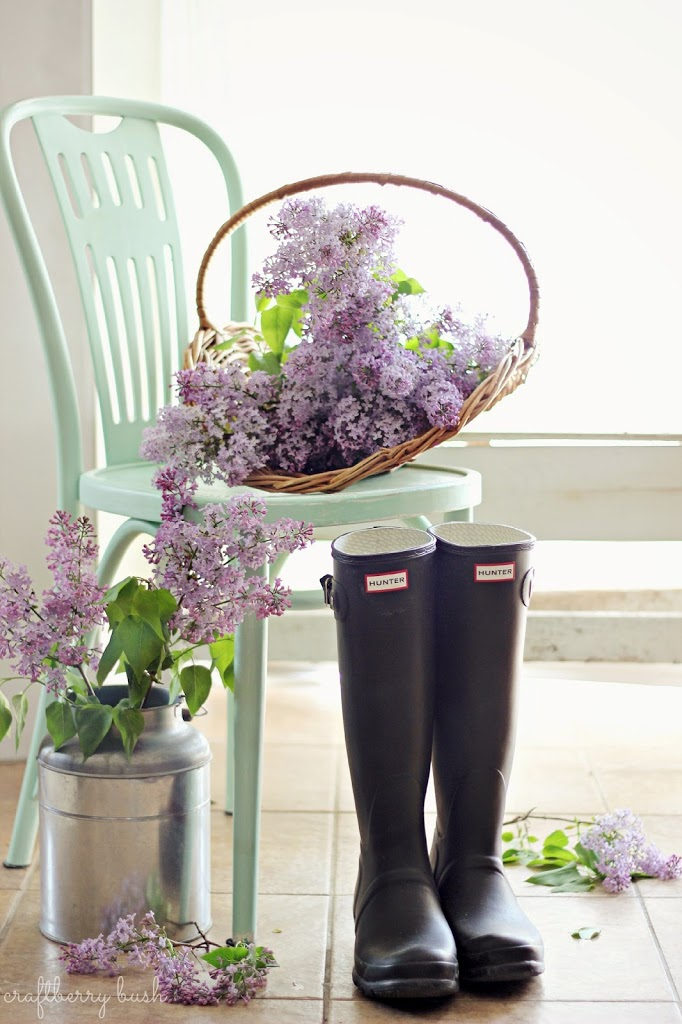 Lilac Ideas and Inspiration