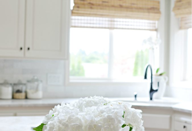 Honed Quartzite Kitchen Counters Reveal